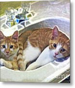 Mary's Cats Metal Print by Joan  Minchak