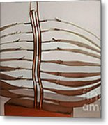 Mitotic Spindle Metal Print by Franco Divi