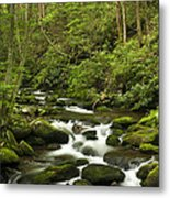 Mountain Rapids Metal Print by Andrew Soundarajan