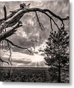 Natures Arch Metal Print by Debra and Dave Vanderlaan