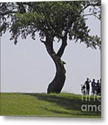 On The Banks Of The Baltic Sea Metal Print by Heiko Koehrer-Wagner