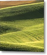 Quiet Morning In The Palouse  Metal Print by Sandra Bronstein