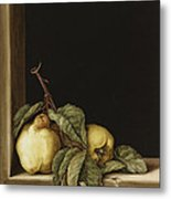 Quinces Metal Print by Jenny Barron