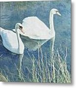 Royal Birds Metal Print by Sharon Lisa Clarke