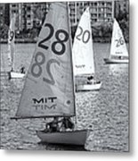 Sailboats On The Charles River II Metal Print by Clarence Holmes