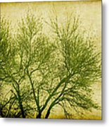 Serene Green 2 Metal Print by Wendy J St Christopher