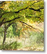 Serenity Metal Print by Wendy J St Christopher