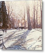Snow At Broadlands Metal Print by Paul Stewart