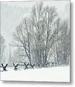 Snowy Day In The Tetons Metal Print by Sandra Bronstein