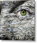 Stone Face Metal Print by Semmick Photo