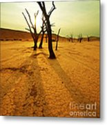 The Dead Valley Metal Print by Boon Mee