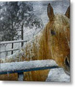 Time Stands Still Metal Print by Kathy Jennings