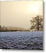 Tree In A Field On A Snowy Day Metal Print by Fizzy Image