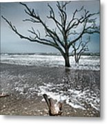 Trees In Surf Metal Print by Steven Ainsworth