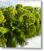 Trees Reflecting In River Metal Print by Elena Elisseeva