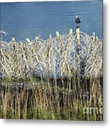 Waiting For You Metal Print by Ellen Cotton