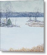 Winter Lake And Cedars Metal Print by Garry McMichael