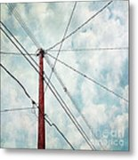 Wired Metal Print by Priska Wettstein