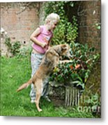 Girl Playing With Dog Metal Print by Mark Taylor