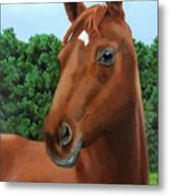 Retired Racer Metal Print by Sandra Chase