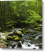 Smoky Mountain Stream Metal Print by Andrew Soundarajan