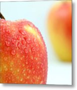 Two Red Gala Apples Metal Print by Paul Ge