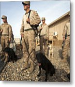 A Group Of Dog-handlers Conduct Metal Print by Stocktrek Images