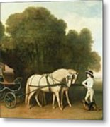 A Phaeton With A Pair Of Cream Ponies In The Charge Of A Stable-lad Metal Print by George Stubbs