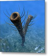 A Species Of Pirania, A Primitive Metal Print by Walter Myers