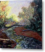 Angel In Nature Metal Print by Stan Hamilton