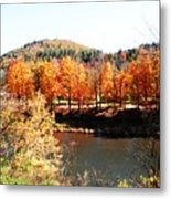 Autumn By The River Metal Print by Jeanette Oberholtzer