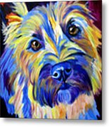 Cairn - Neiman Metal Print by Alicia VanNoy Call