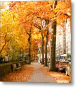 Central Park West Metal Print by Ariane Moshayedi