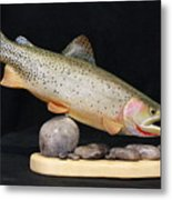 Cutthroat Trout On The Rocks Metal Print by Eric Knowlton