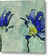 Duo Daisies - 02dp3b22 Metal Print by Variance Collections