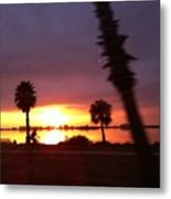 Edgewater Metal Print by David Feldman