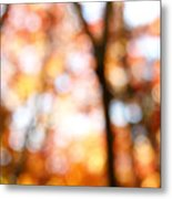 Fall Colors Metal Print by Les Cunliffe