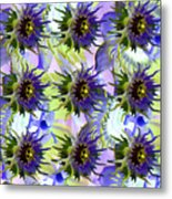 Flowers On The Wall Metal Print by Betsy C Knapp
