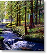 Forest Waters Metal Print by David Lloyd Glover