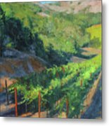 Four Rows Napa Valley Metal Print by Anna Rose Bain