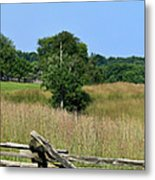Going To Appomattox Court House Metal Print by Teresa Mucha