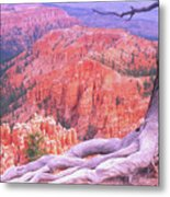 Holding On Metal Print by Dave Hampton Photography