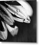 I Am Barely Breathing Metal Print by Laurie Search