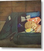 I'm Going With You Metal Print by Laurie Search