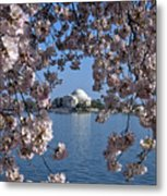 Jefferson Memorial On The Tidal Basin Ds051 Metal Print by Gerry Gantt