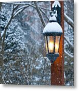 Late Afternoon Snow Metal Print by Sandra Bronstein