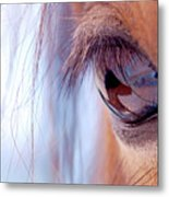 Macro Of Horse Eye Metal Print by Anne Louise MacDonald of Hug a Horse Farm
