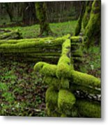 Mossy Fence 4 Metal Print by Bob Christopher