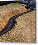 Mountain Road Metal Print by Garry Gay