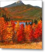Mt.chocorua Metal Print by Jack Skinner